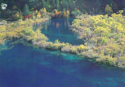 四川森林生态旅游